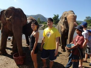 Volunteering at Elephant Nature Park, an organization that rescues abused elephants, during our belated honeymoon, 12/12